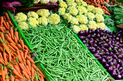 Various vegetables. Various fresh and clean vegetables Royalty Free Stock Image