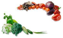 Various vegetables and herbs. Two groups of various fresh vegetables  and herbs laid out around the perimeter of the frame with a free central part on a light Stock Images