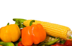 Various vegetables isolated Royalty Free Stock Images