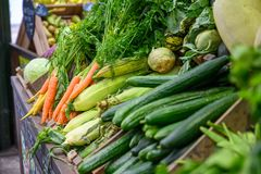 Free Various Vegetables On Display At A Fruit And Veg Stall In Borough Market, London Stock Photo - 165382090