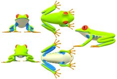 Various viewing angles of a red-eyed tree frog. A computer generated illustration image of various viewing angles of a red-eyed tree frog against a white royalty free illustration