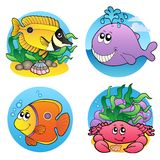 Various water animals and fishes 2. Illustration Royalty Free Stock Images