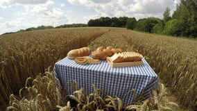 Various white breads in wheat field, 4K time lapse. Various white breads on the table in ripe wheat field on sunny cloudy summer day, 4K time lapse stock video footage