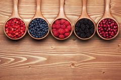 Various wild berries in small wooden scoops. Royalty Free Stock Photo