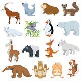 Various Wildlife Animals set Royalty Free Stock Photos