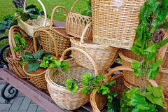 Various woven wooden basket Royalty Free Stock Images