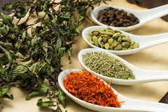 Variuos of Spices with branch of dried Mint Royalty Free Stock Photos