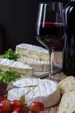 Varius ost med rött vin och druvor Royaltyfria Bilder