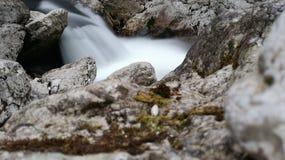 Varje tår är en vattenfall Royaltyfria Bilder