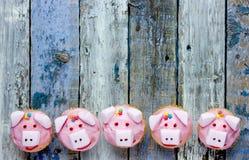 Varken cupcakes stock fotografie