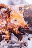 Varken op een Spit stock fotografie