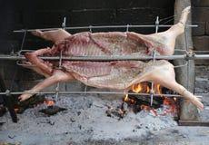 varken op het spit en langzaam gekookt op de grote open haard tijdens stock foto