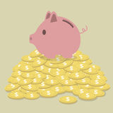 Varken-vormige spaarpot die zich op gouden muntstukken bevinden Royalty-vrije Stock Afbeeldingen