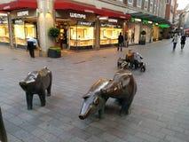 varkens royalty-vrije stock afbeeldingen