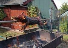 Varkensbraadstuk stock foto's