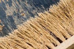 Varkenshaar stock afbeelding