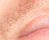 Varkenshaar op de huid Close-up royalty-vrije stock fotografie