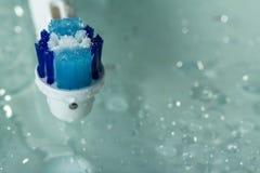 Varkenshaar van elektrische tandenborstel, achtergrond van waterdruppeltjes stock fotografie
