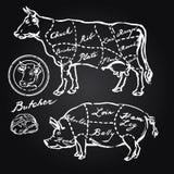 Varkensvlees en rundvleesbesnoeiingen stock illustratie