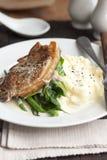 Varkensvlees met fijngestampte aardappels Royalty-vrije Stock Fotografie