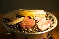 Varkensvleesgrill op hete steenkolen Stock Afbeelding