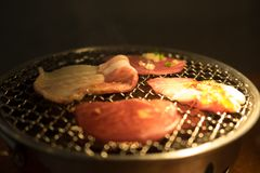 Varkensvleesgrill op hete steenkolen Stock Foto