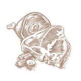 Varkensvleeslapje vlees met varkensvleesbeen Royalty-vrije Stock Afbeelding