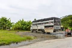 Varkensvrachtwagen, Vietnam Stock Foto