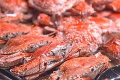 Varm ångad röd konung Crabs på den varma krukan för svart platta Arkivbilder