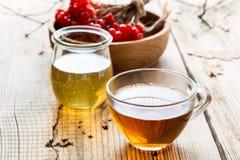 Varm örtte med honung och viburnumen Fotografering för Bildbyråer