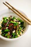 Varm asiatisk uppståndelse stekte aubergine Royaltyfria Bilder