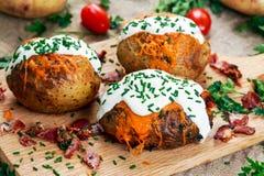 Varm bakad potatis med ost, bacon, gräslökar och gräddfil royaltyfri bild