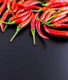 varm chili Royaltyfria Bilder