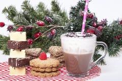 Varm choklad i en kopp och kex Royaltyfri Foto
