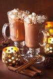 Varm choklad med den kanelbruna vinterdrinken för mini- marshmallower Arkivbilder