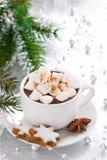 Varm choklad med marshmallow- och pepparkakakakor, lodlinje Arkivfoto