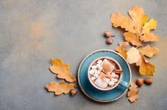 Varm choklad med marshmallower och Autumn Leaves arkivbild