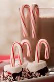 Varm choklad med marshmallower och godisrottingar Arkivfoton