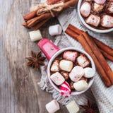 Varm choklad med marshmallower och kryddor på den lantliga trätabellen arkivbilder