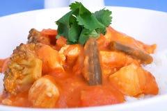 varm curry royaltyfri foto