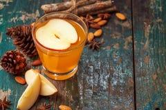 Varm drink av äpplete med den kanelbruna pinnen Varm drink med äpplet arkivbild