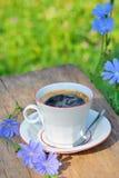 Varm drink för Chicory Fotografering för Bildbyråer