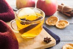 Varm drink med äpplet och kryddor arkivbilder