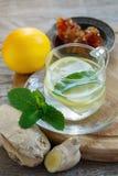 Varm drink med ingefäran, citronen, mintkaramellen och honung royaltyfri fotografi