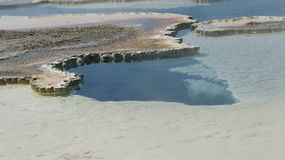Varm fjäder i Yellowstone Arkivfoto