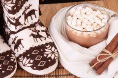Varm häftklammermatare och kakao med marshmallowen Royaltyfri Bild
