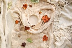 Varm höst kopp kaffe som slås in i en woolen beige tröja 1 livstid fortfarande arkivbilder
