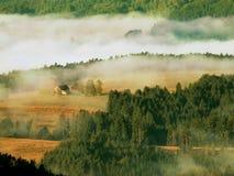 Varm höstsoluppgång i en härlig bergig bygd Ljus dimma ovanför fält med fältet med baler av sugrör Varma solstrålar Royaltyfria Bilder
