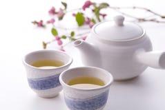 varm japansk tea Royaltyfria Foton