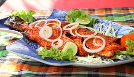 Varm kryddig fisk för asiatisk stile fotografering för bildbyråer